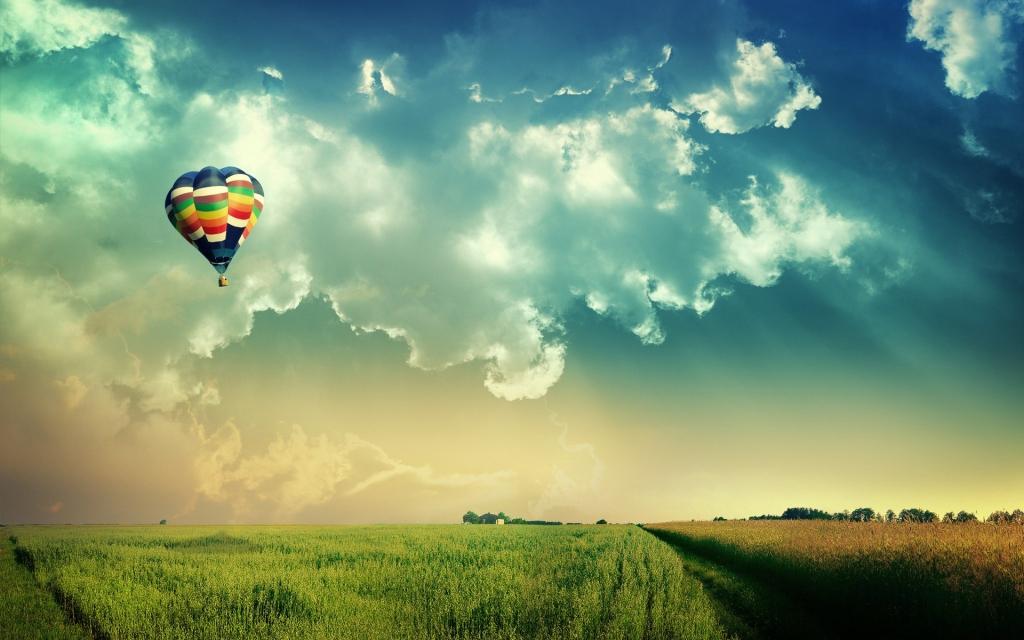 6908832-dreams-of-fly